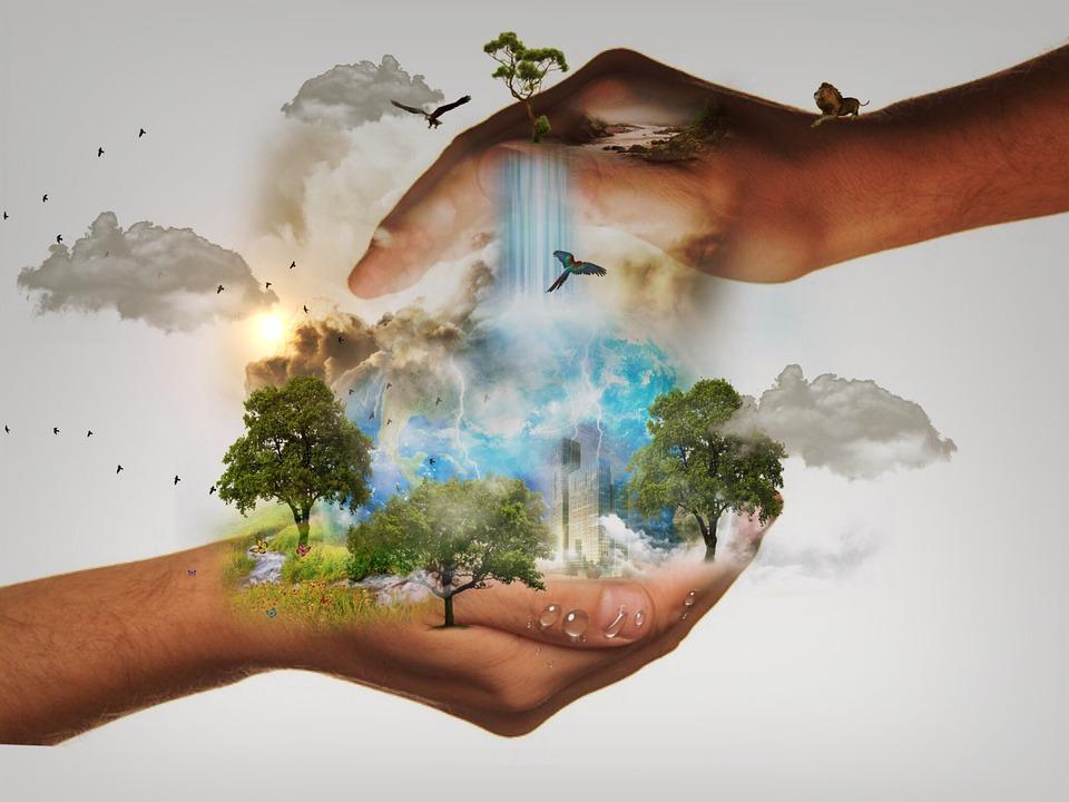 Burse pentru profesioniștii interesați de conservarea naturii