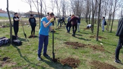 ecOprovocarea, felul prin care elevii învață despre mediu și reciclare