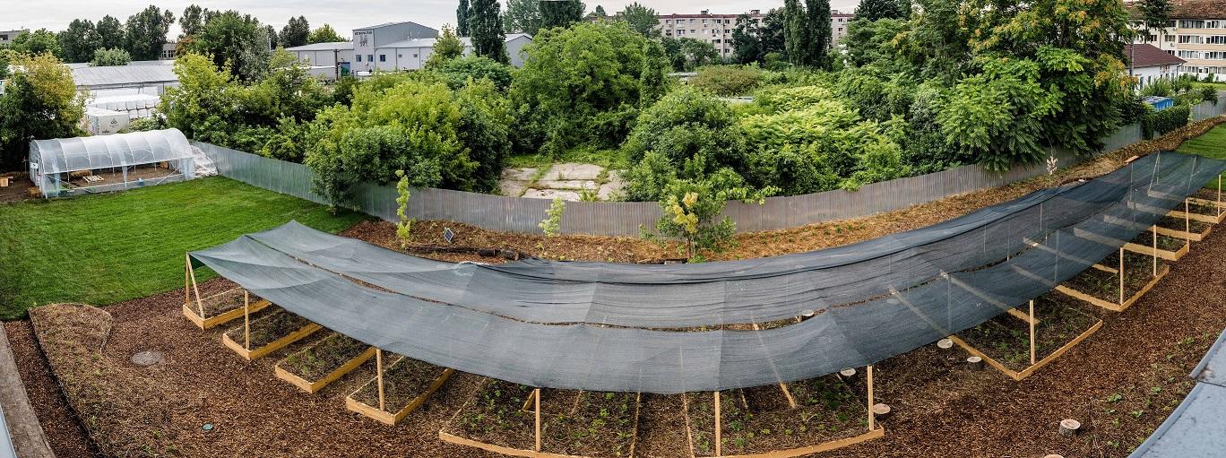 Kaufland se transformă și aduce grădini urbane pentru comunitate în spațiile sale