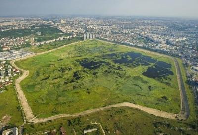 Arta în folosul naturii din Parcul Natural Văcărești prin BiotopART Bucharest