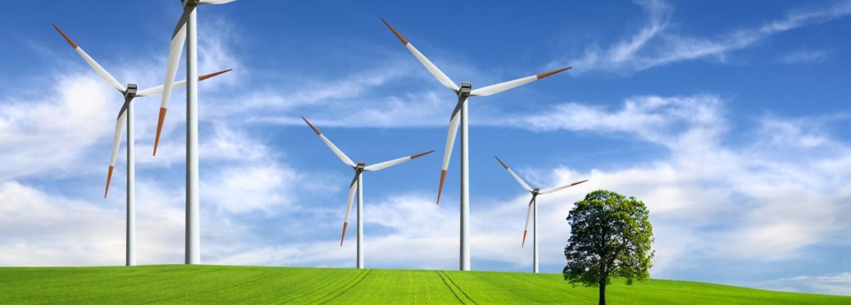 Wind Open Day, ca să înțelegi energia verde
