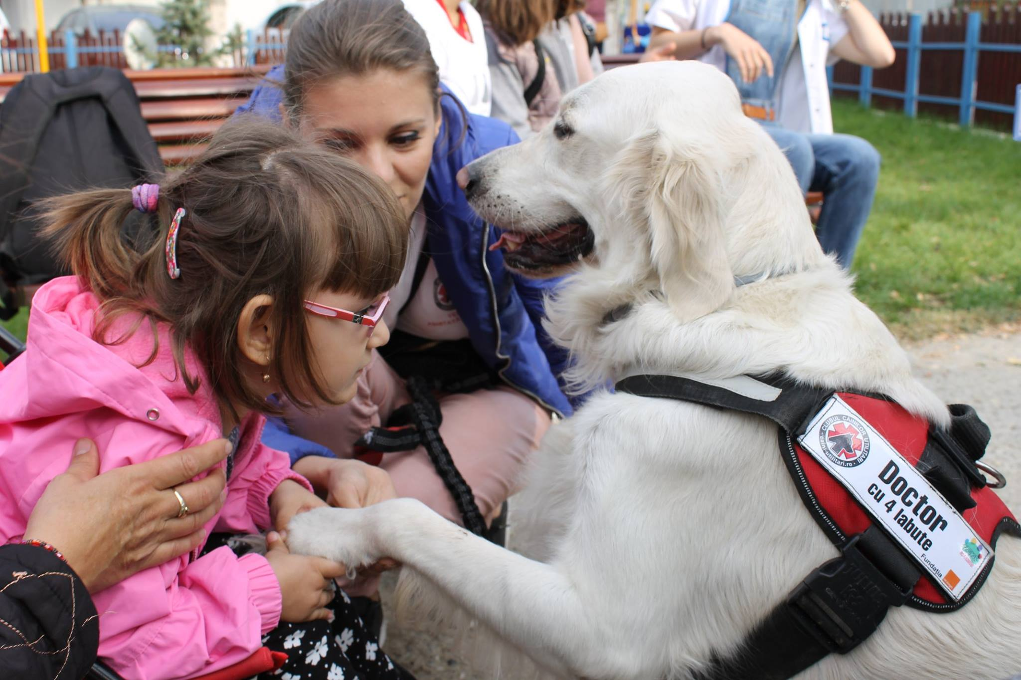 Terapia cu animale, o metoda inedita de terapie pentru copii È™i seniori