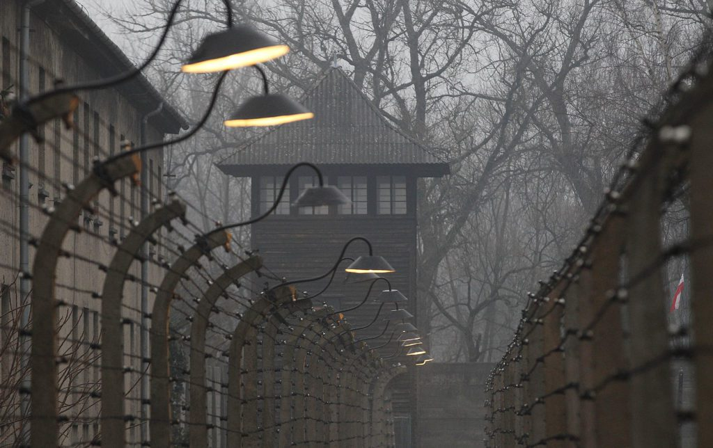 [EN] POLAND: civil society calls for international solidarity against Holocaust law