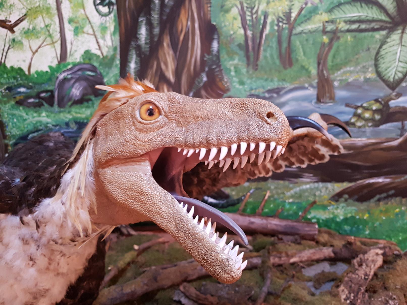 Festivalul Dinozaurilor weekendul acesta în Țara Hațegului
