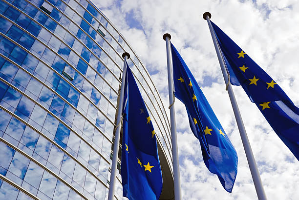 Instrumentul Valorilor Europene / European Values Instrument