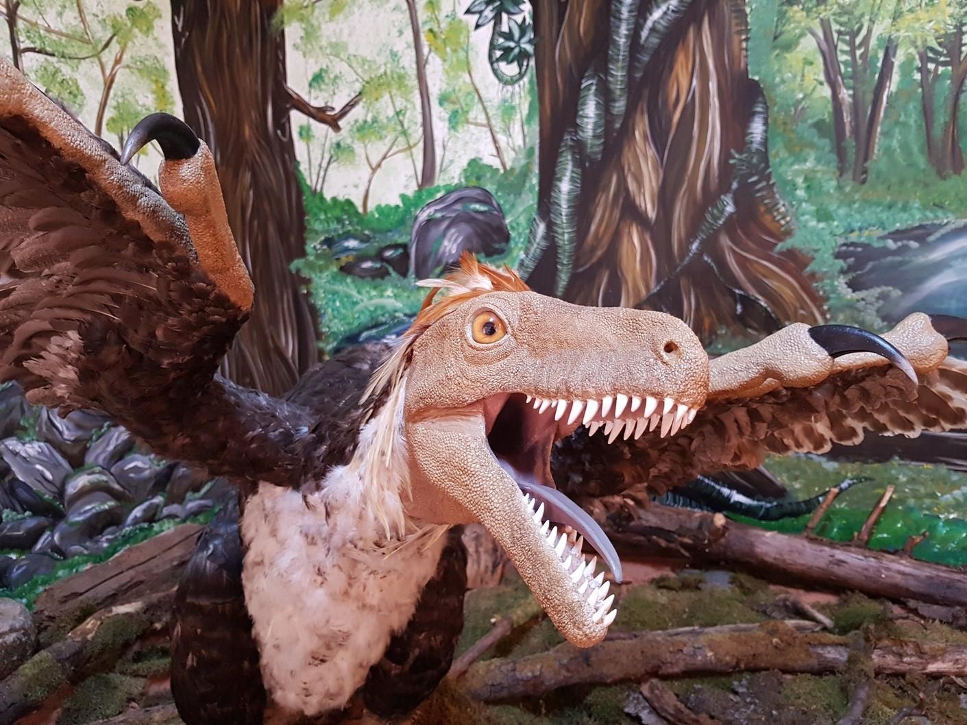 Geoparcul Dinozaurilor, vizitat de doi evaluatori UNESCO