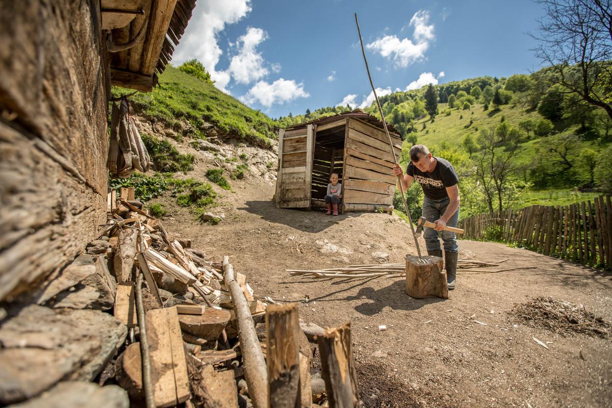 Criza lemnului de foc, presiunea asupra pădurilor și prelucrarea superioară a lemnului