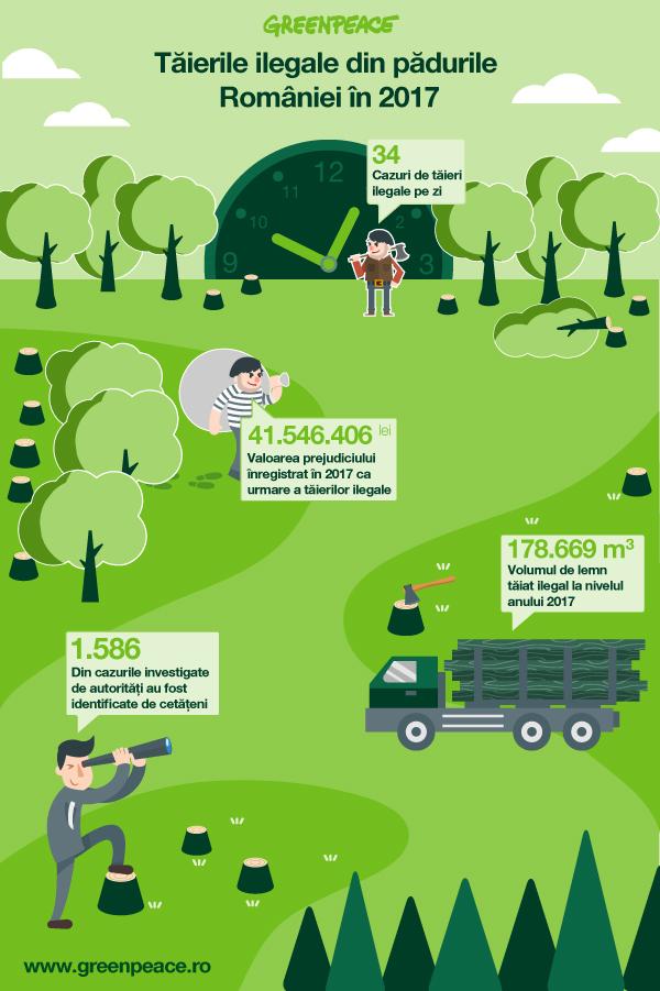 34 de cazuri de tăieri ilegale în fiecare zi în pădurile României