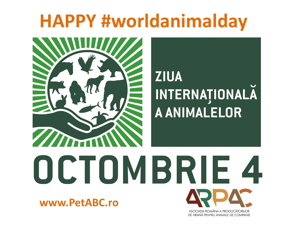 Ziua Internaţională a Animalelor - o sărbătoare globală la care participă şi România pe 4 octombrie