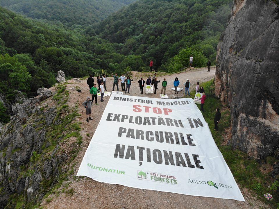 Agent Green publică dimensiunea exploatărilor criminale din Parcurile Naționale