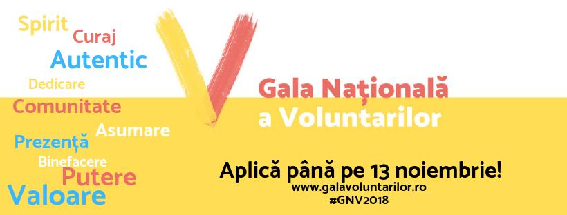 Voluntar Pentru România. Împreună de 100 de ani!