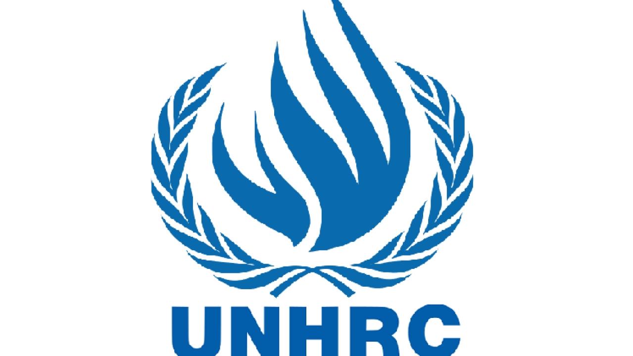 Declarația Națiunilor Unite pentru Drepturile Țăranilor și Țărăncilor a fost adoptată de Adunarea Generală ONU la New York