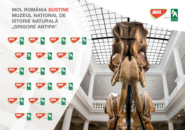 """Muzeul Naţional de Istorie Naturală """"Grigore Antipa"""" încheie un partenriat de sponsorizare cu Mol România"""