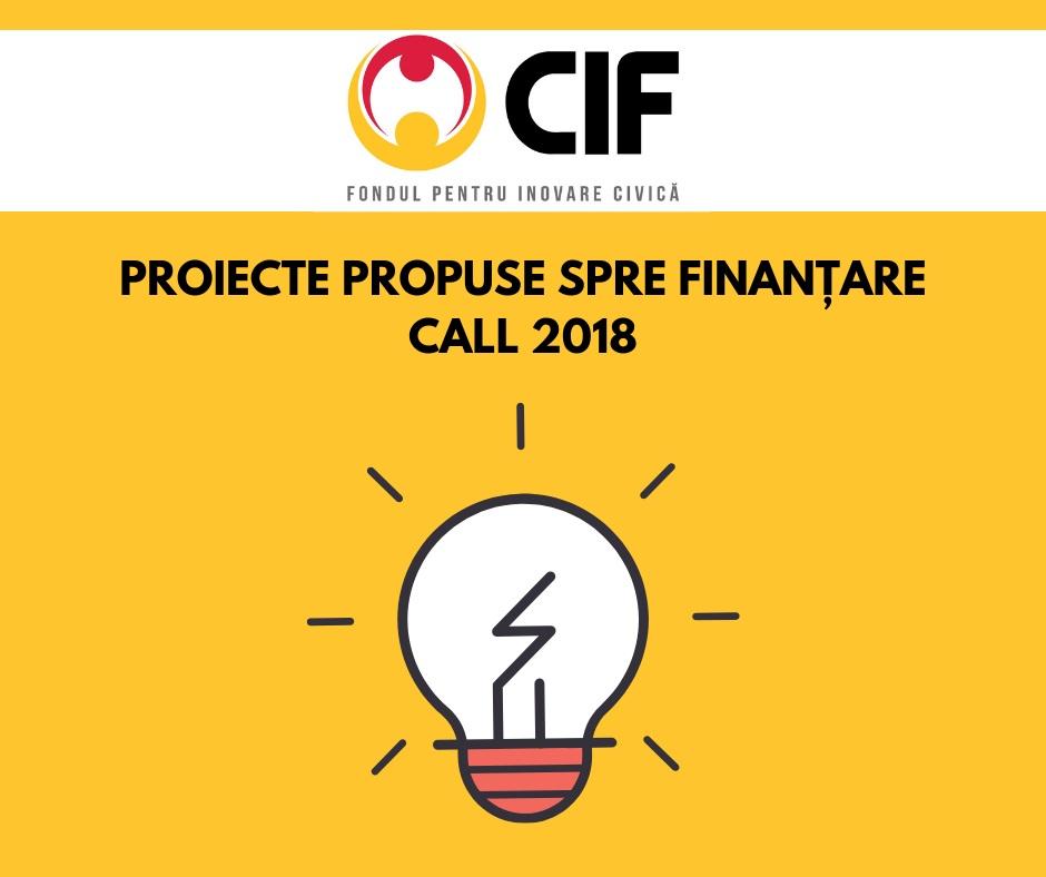 11 proiecte finanțate prin Fondul pentru Inovare Civică