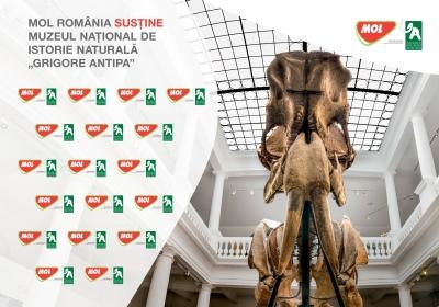 """Muzeul Naţional de Istorie Naturală """"Grigore Antipa� încheie un partenriat de sponsorizare cu Mol România"""