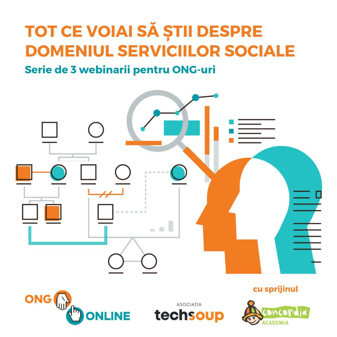 Școala Digitală pentru ONG-uri: ONG Online