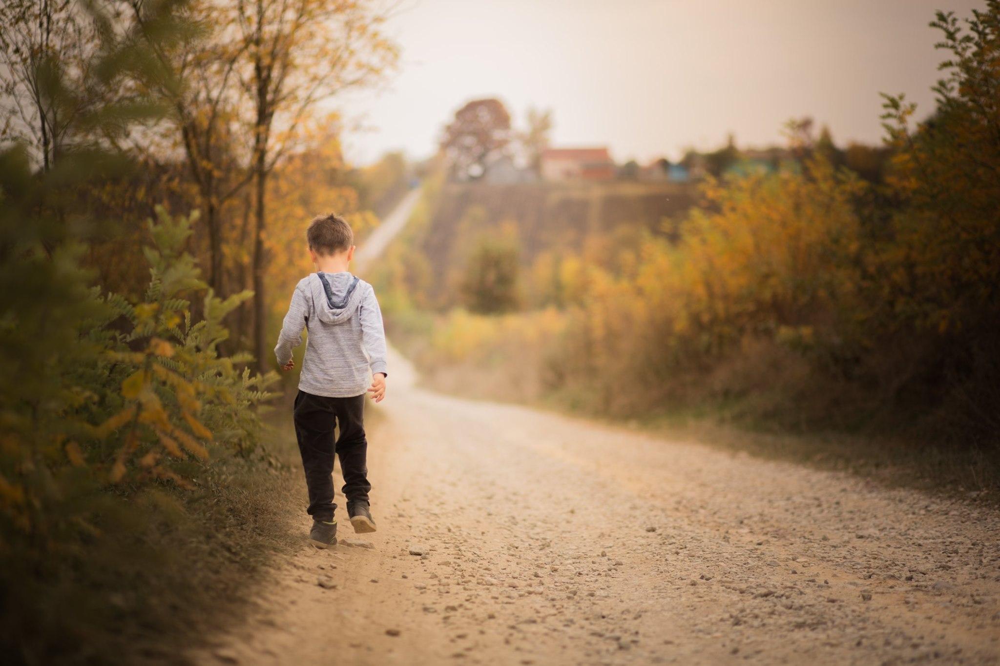 Nedecontarea abonamentelor pentru elevi, pentru transport judeÈ›ean,  va duce la creÈ™terea abandonului È™colar