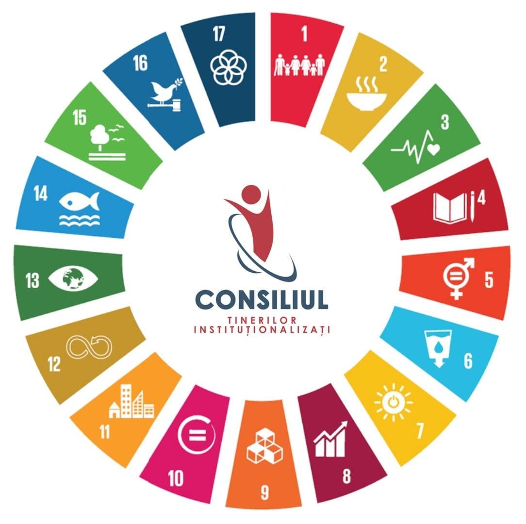 Consiliul Tinerilor InstituÈ›ionalizaÈ›i: Ne dispar colegii din sistemul de protecÈ›ie a copilului!