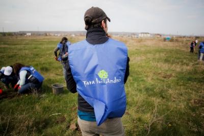 România plantează pentru mâine! OMV Petrom plantează 70.000 de copaci în luna noiembrie