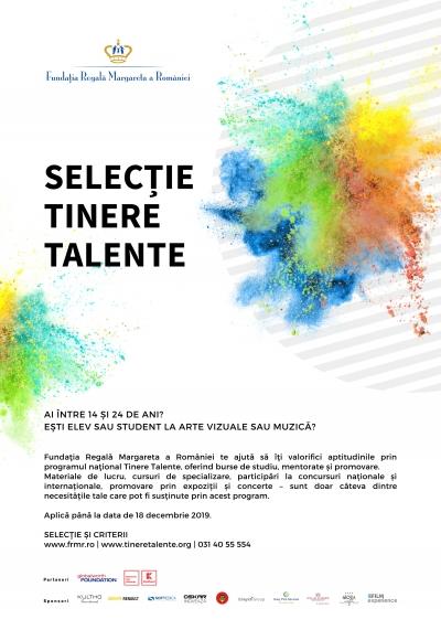 Muzicieni È™i artiÈ™ti plastici din noua generaÈ›ie pot candida pentru bursa Tinere Talente