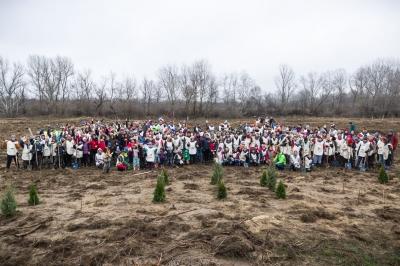Pădurea Copiilor s-a mărit cu încă 3 hectare!