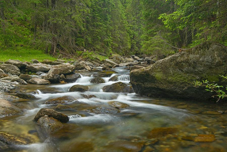 Guvernul a decis să protejeze doar râurile aflate mai sus de 1500 m altitudine