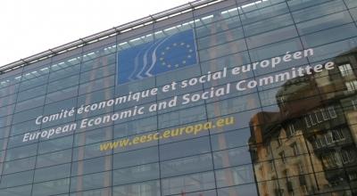 Guvernul României a desemnat lista reprezentanților României în cadrul CESE