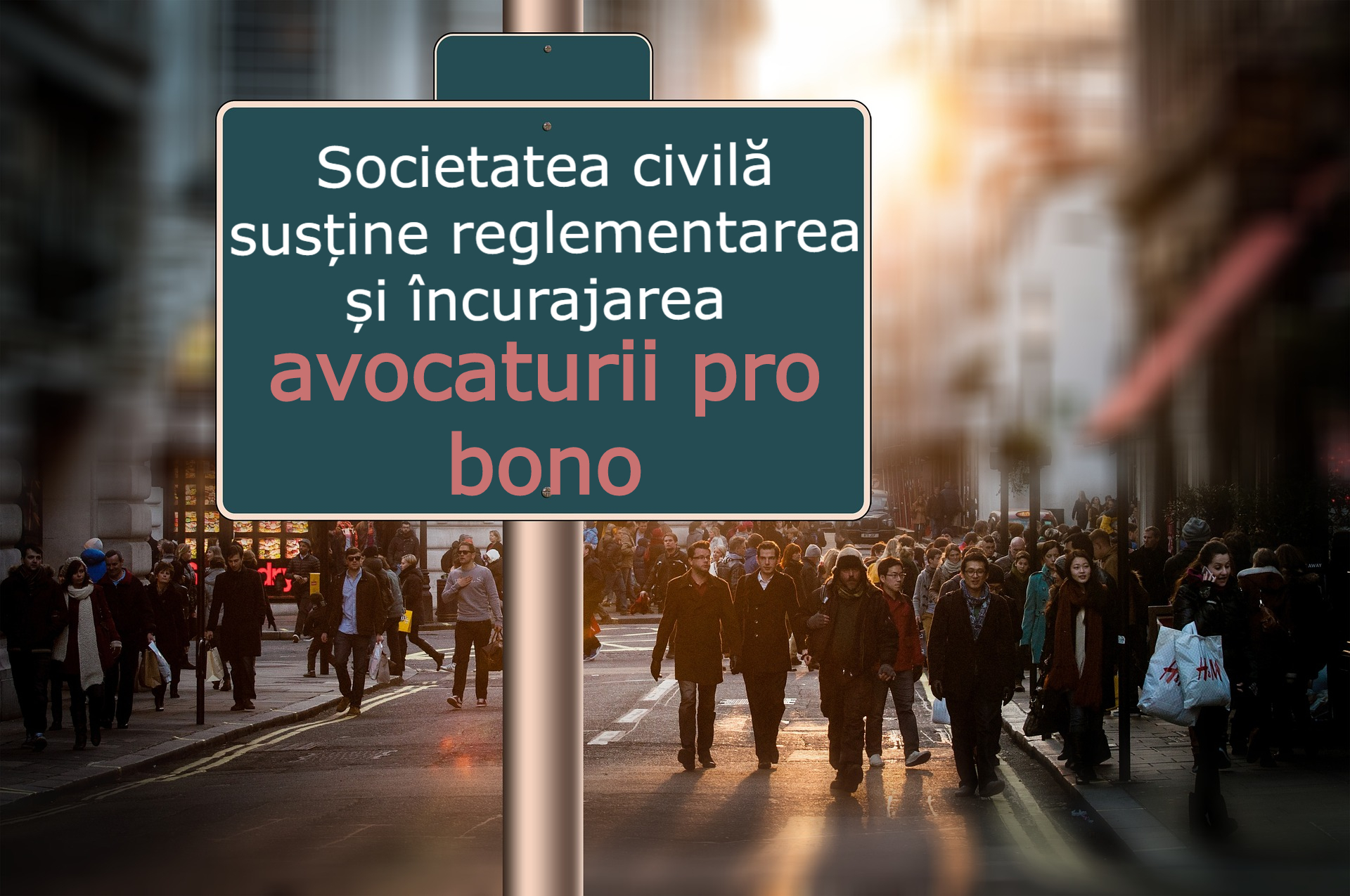 Societatea civilă susține reglementarea și încurajarea avocaturii pro bono