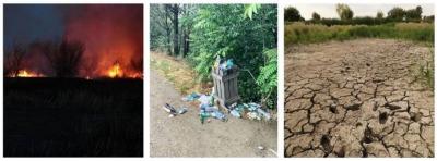 Scrisoare deschisă Parcul Natural Văcărești este în pericol!