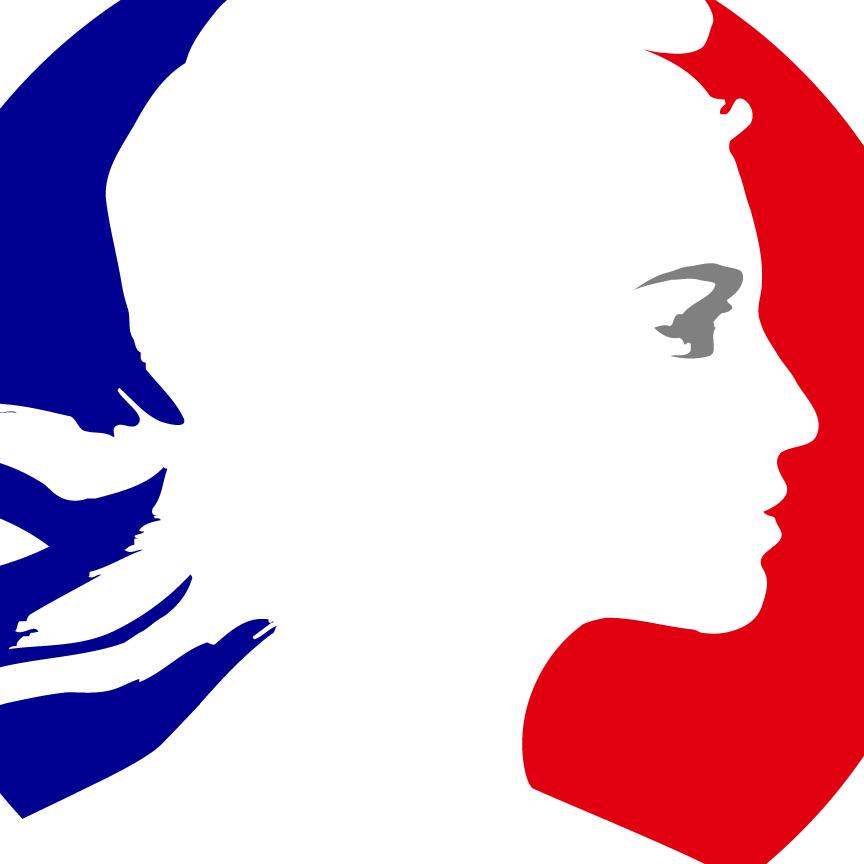 Sprijin financiar oferit de Ambasada Franței și Institutul Francez societății civile din România