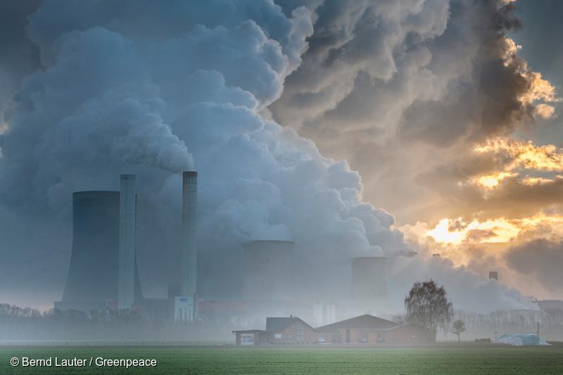 Greenpeace le cere europarlamentarilor români să voteze joi pentru reducerea drastică a emisiilor de carbon