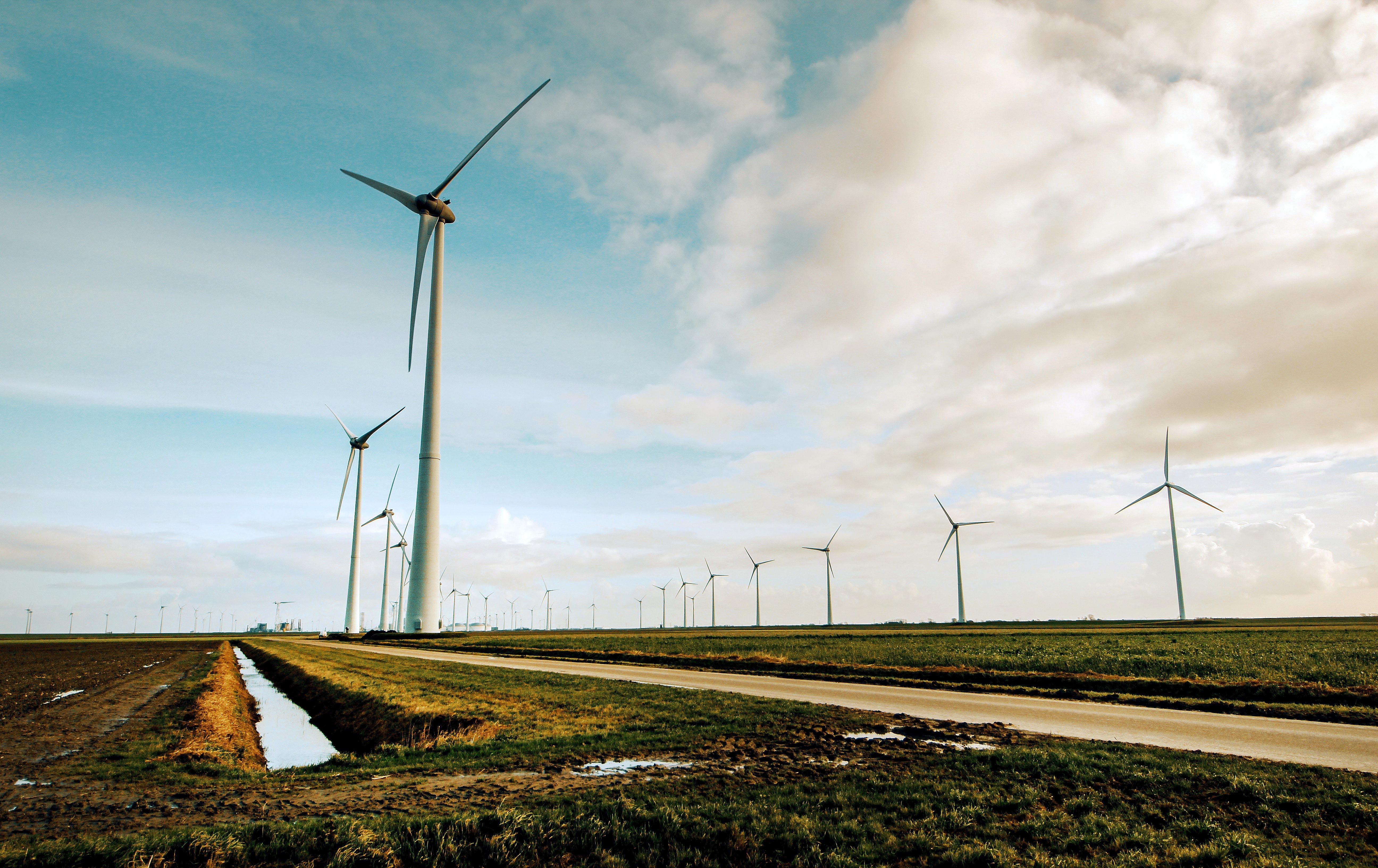 Comisia Europeană recomandă României finanțarea unor proiecte verzi din Fondul de redresare și reziliență