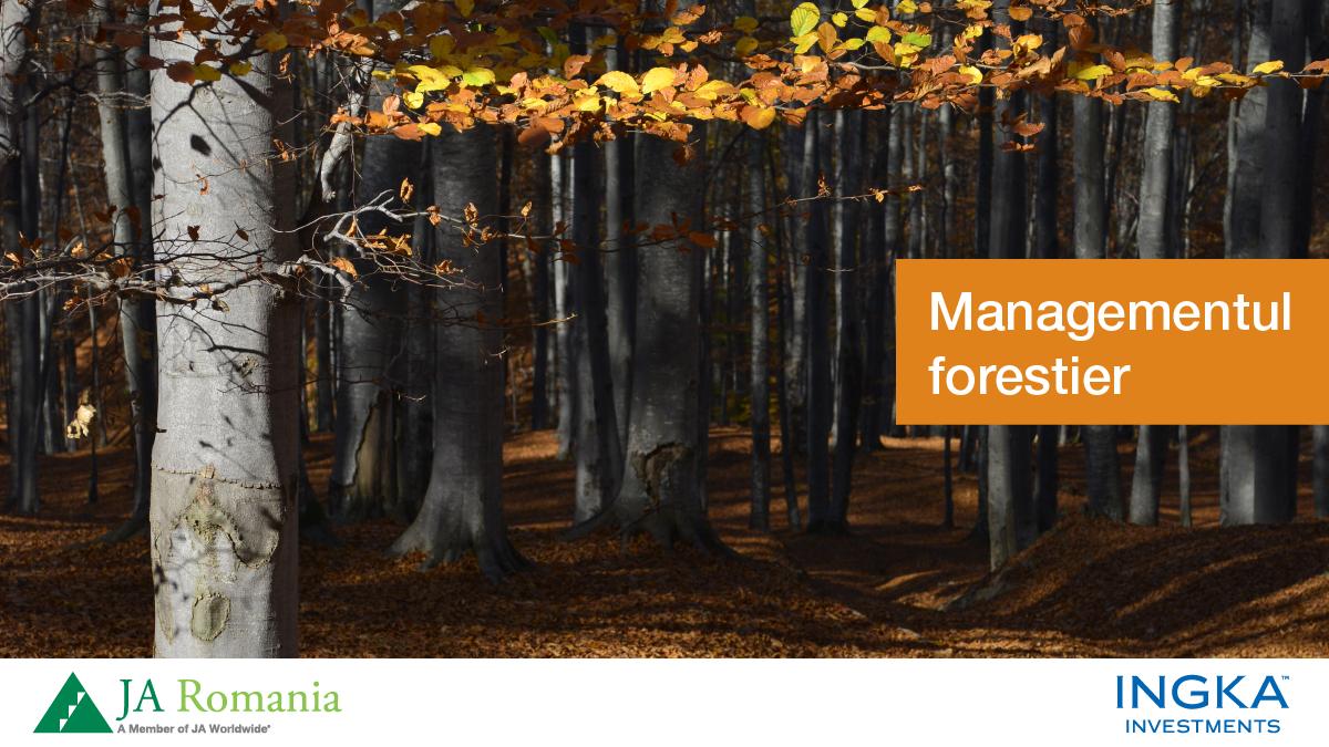Educație pentru managementul responsabil al pădurilor