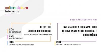 Situația înscrierilor în Registrul Sectorului Cultural și Inventarierea ONG-urilor culturale din România