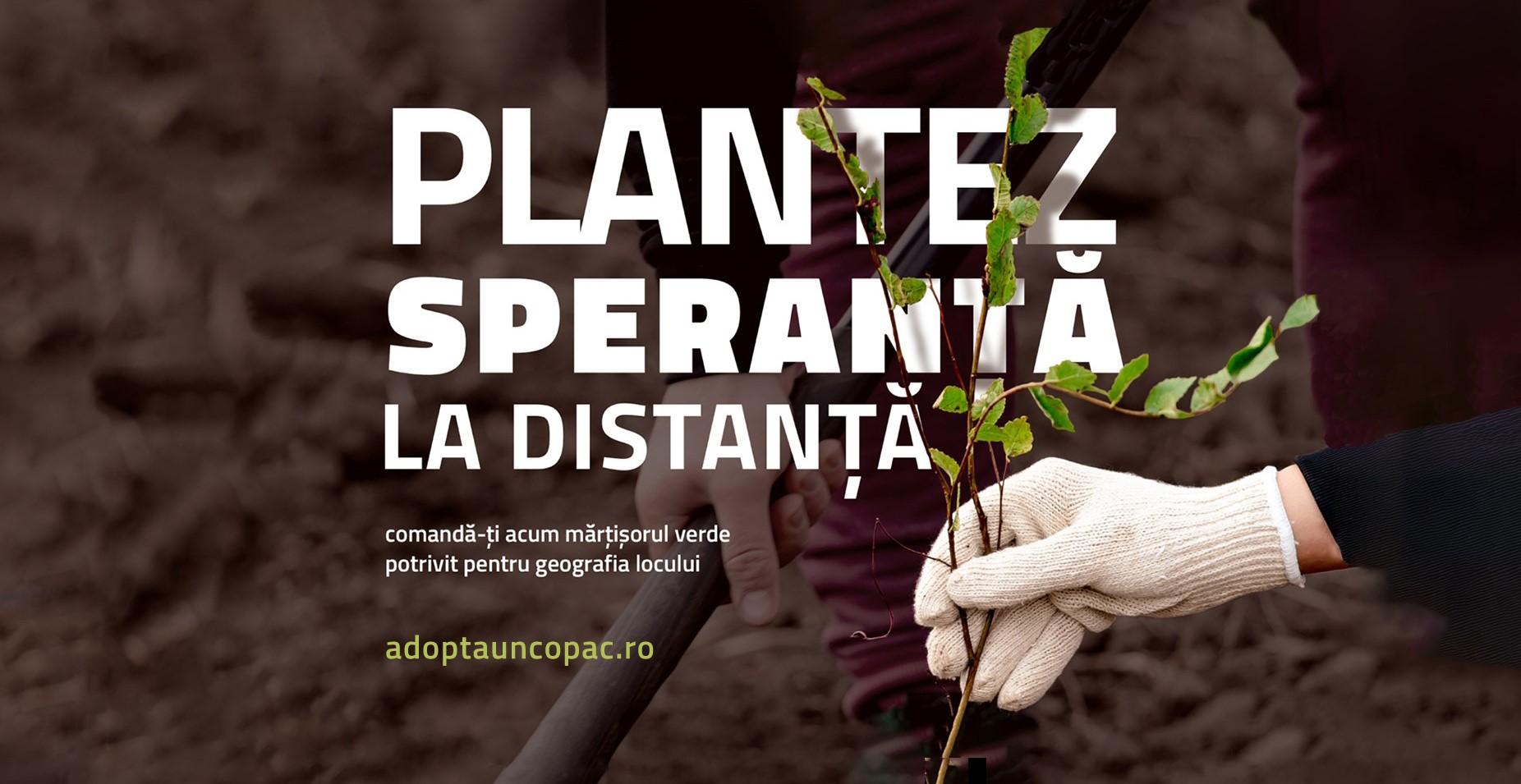 """""""Adoptă un copac!"""" lansează ediția de primavară a campaniei """"Plantare Virtuală - Plantăm speranță la distanță"""""""
