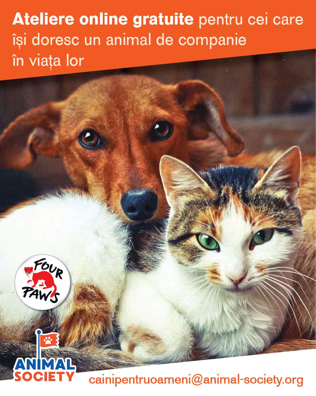 Animal Society va susține ateliere online gratuite pentru cei care își doresc un animal de companie