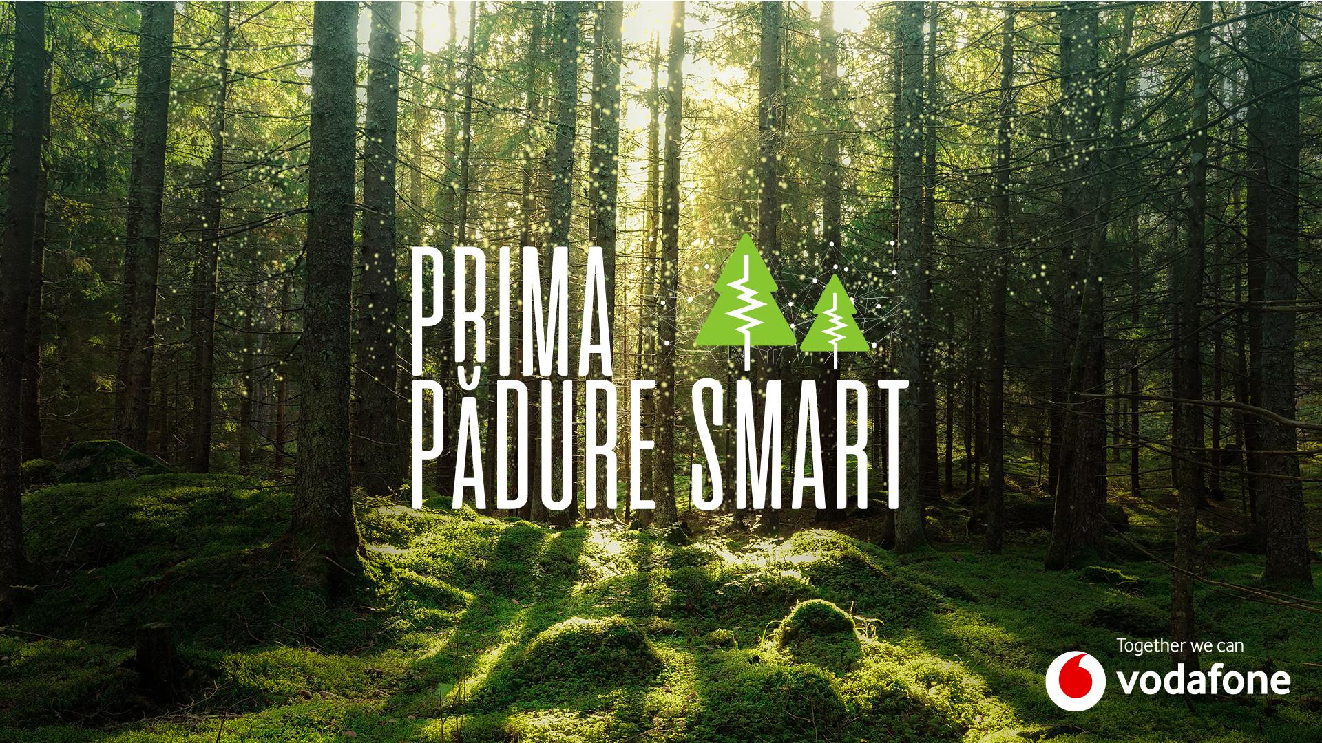 Prima pădure inteligentă din România