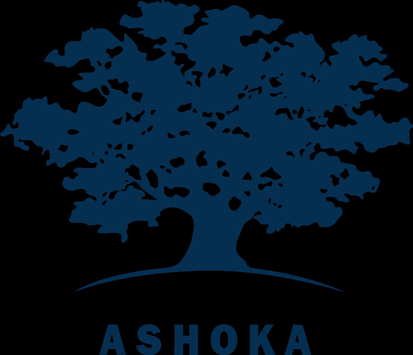 20 de antreprenori sociali au început programul de incubare și mentorat Bridge for Billions coordonat de Ashoka România și fonduri-structurale.ro